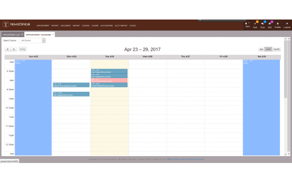 Appointment calendar view